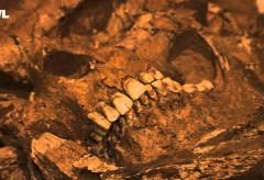 LWL-Museum für Archäologie – Das LWL-Museum für Archäologie stellt sich vor