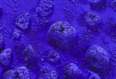 Städel Museum: KunstIStück – Yves Klein: Relief éponge bleu