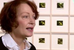 Kunstforum Wien: Balthus Polaroids