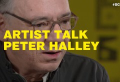 ARTIST TALK. PETER HALLEY AND MAX HOLLEIN