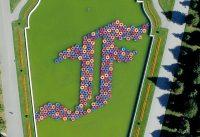 """Ai Weiweis """"F Lotus"""" im Wiener Belvedere – #aiww21"""