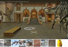 Digital ins Senckenberg Naturmuseum Frankfurt