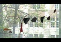 Calder to Kelly – Die amerikanische Sammlung im Kunstmuseum Winterthur