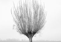 Witterungen – Landschaften und Lebenswelten
