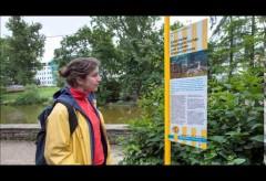 historisches museum frankfurt – Klasse 2b Anna-Schmidt-Schule: Über das Entenhotel
