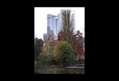historisches museum frankfurt – Nina Gorgus: Über Central Park Wallanlagen