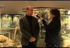 Museum für Naturkunde Magdeburg: Lebensraum Mittlere Elbe