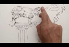 Weserrenaissance-Museum: creare – Kurzfilm zur Geschichte der Kreativität