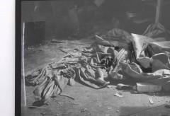 DIE SAMMLUNG. Klassiker, Entdeckungen und neue Positionen – im Lentos Kunstmuseum