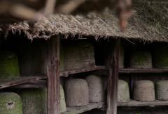 Historische Häuser und Landschaften im Freilichtmuseum am Kiekeberg