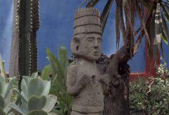 Jardín Azul – Film zur Ausstellung «Gärten der Welt» im Museum Rietberg