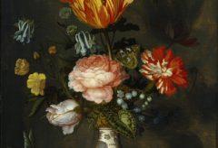 """Balthasar van der Asts """"Blumen"""" wieder im Suermondt-Ludwig-Museum"""