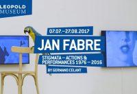 Jan Fabre   Leopold Museum